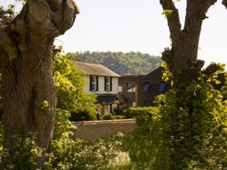 Denbies Vineyard Hotel