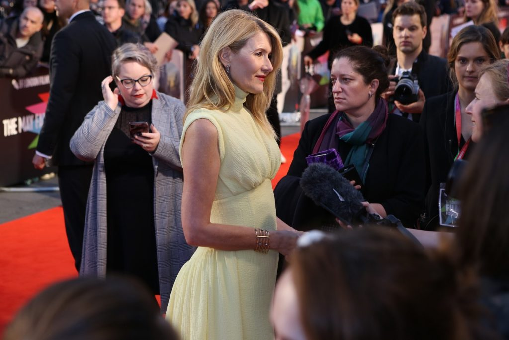 Laura Dern - Marriage Story