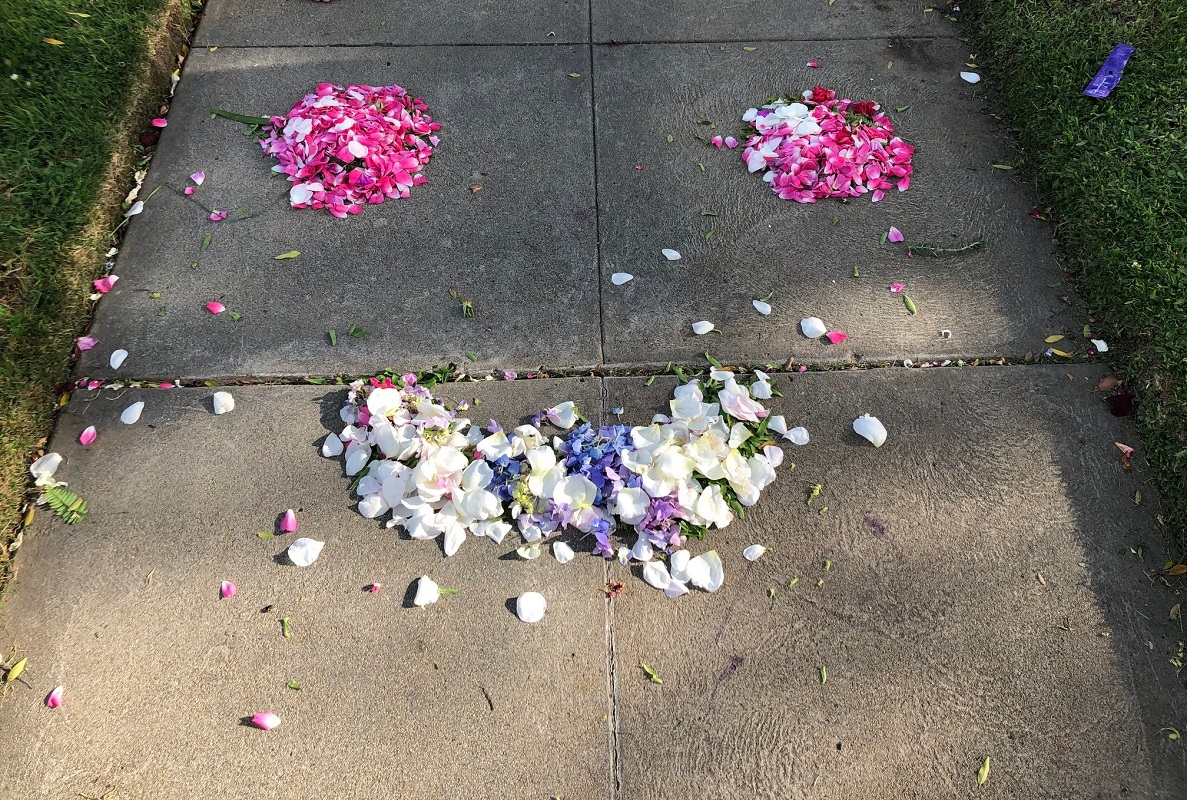 Petals on the pavement