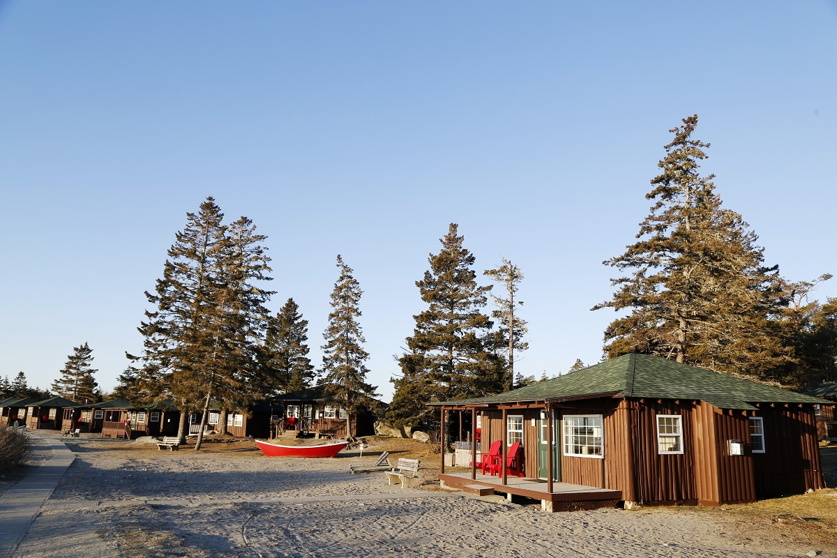 Cabins in among the trees